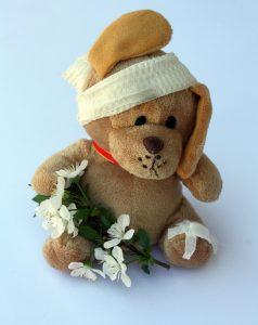 teddy-242871_1280